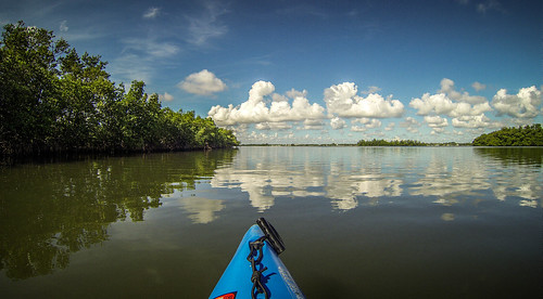 Indian River Paddling-47
