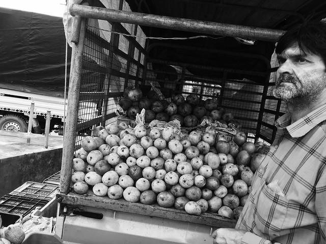 Mango vendor - بائع المانجو