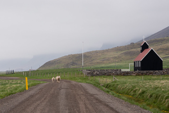 Rauðasandur in the Westfjords of Iceland
