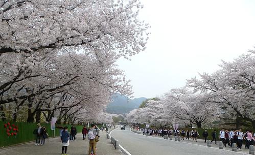 C16-Seoul-Grand Parc-j4 (1)