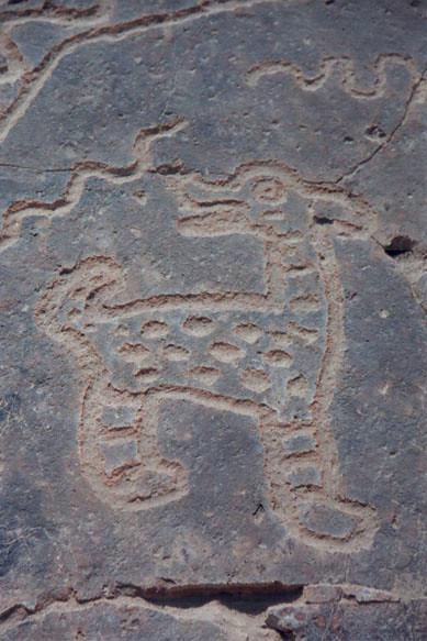 Toro Muerto / Querulpa