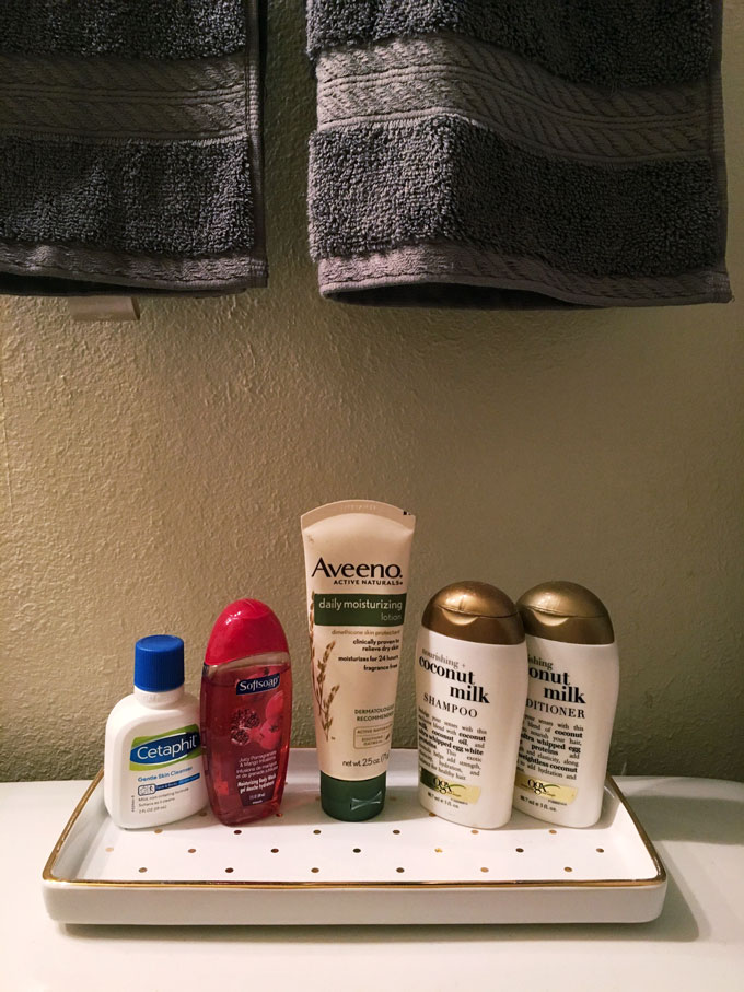 guest bathroom details