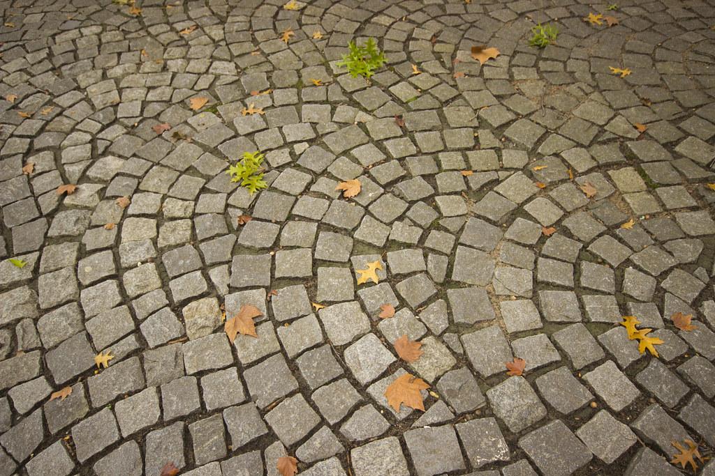 cobbles 1