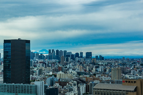 Shinjuku skyscrapers and Mount Fuji