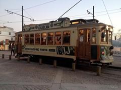 Porto public transport. Tram. Porto. Portugal