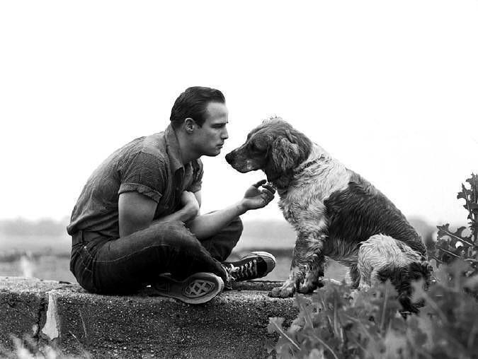Brando9