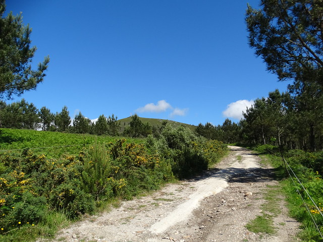 Pista en la Ruta dos Montes Enxa e Dordo