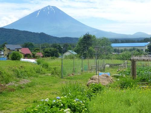 jp16-Fuji-Saiko-Village (3)