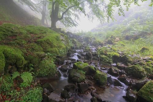 Parque Natural de #Gorbeia #Orozko #DePaseoConLarri #Flickr - -622