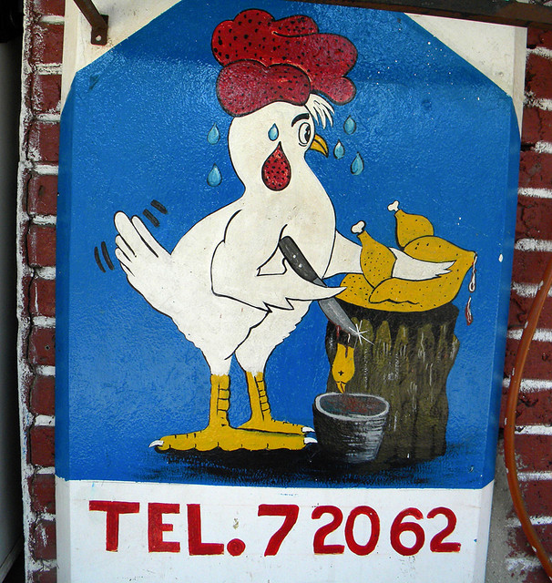 The Phone Number for Roasted Chickens in Huatalco, Mexico