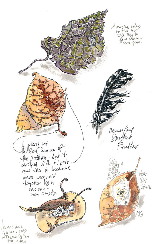 Sketchbook #99: Treasures