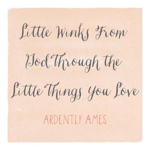 Little Winks Through Little Things