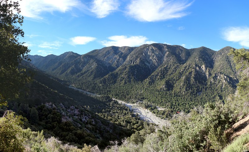Looking across to Little San Gorgonio Mountain, Wilshire Peak, and Oak Glen Peak from the Momyer Trail