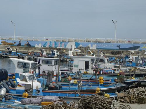 c16-busan-bord de  mer (6)