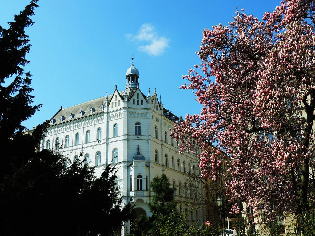 Festival Of Flowers: Zagreb, Croatia