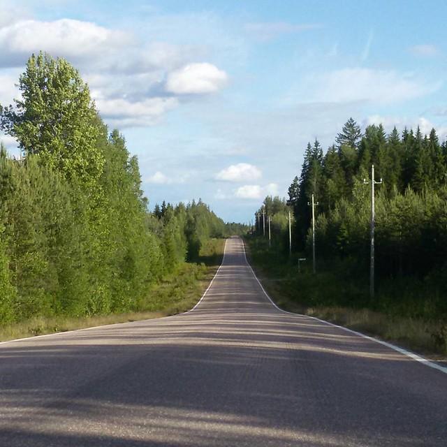 По таким дорогам можно ездить почти бесконечно ☺ #дорога #Финляндия #road #Finland