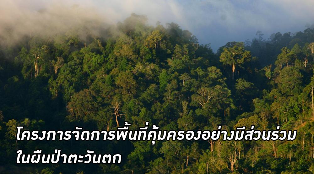 โครงการจอมป่า