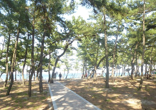 c16-Gangneung-Plage (10)