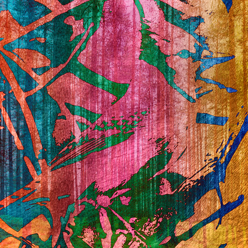 Digital collage with Bluejay