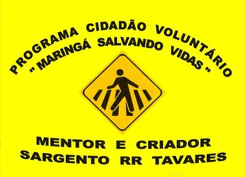 programa cidadão voluntário