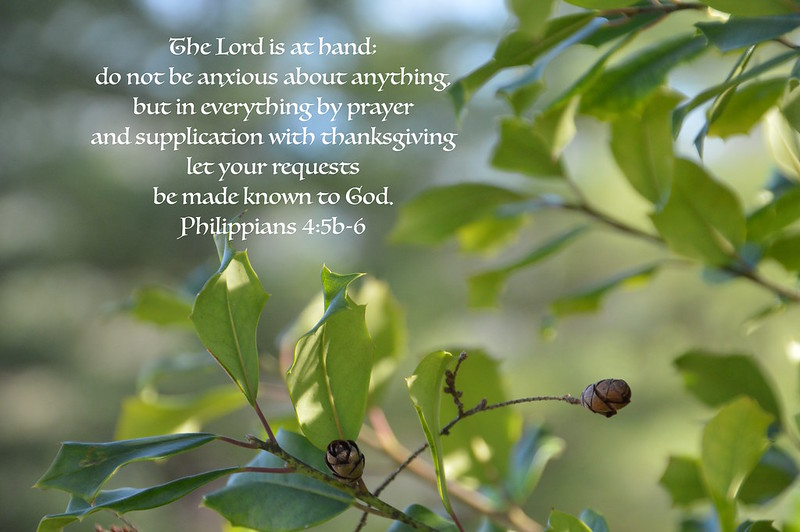 Philippians 4:5b-6