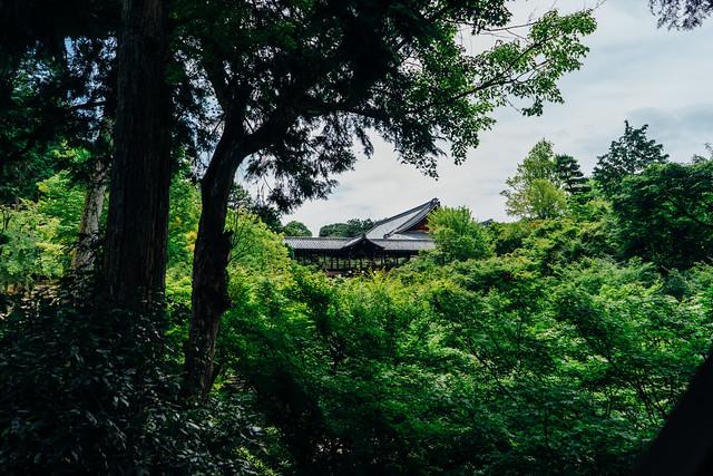 Kyoto_Tofukuji_10_SEL28F20