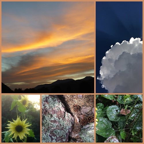 Nature - sunsets, clouds, flowers, rocks