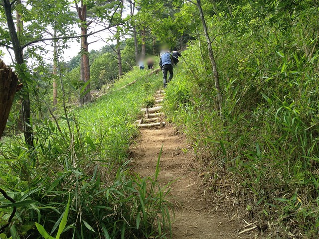 岐阜のマチュピチュ 天空の遊歩道