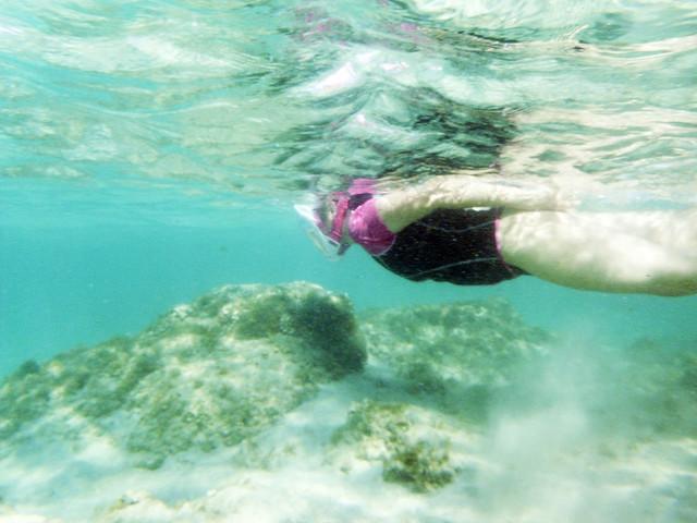 Snorkeling V