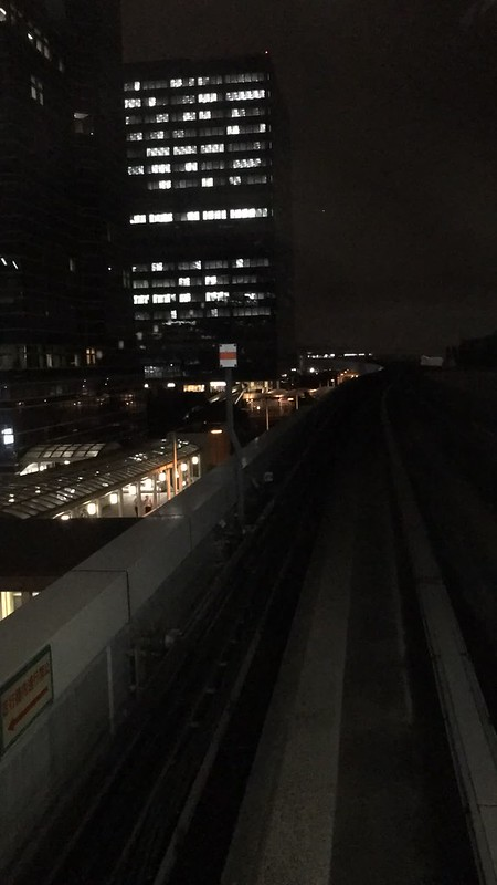 Tokyo night Yurikamome cruise