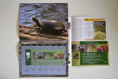 My 1st published photo was in the EBRPD 2012 Calendar