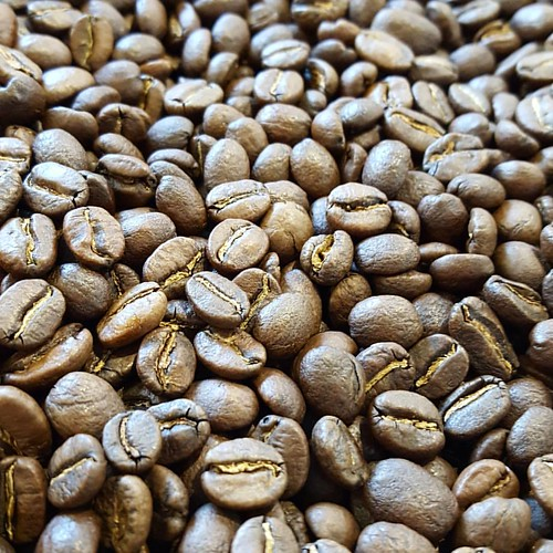 Roasted! Colombia Inza Veredas Vecinos. #caffedbolla #slc #coffeebeans #singleorigin #coffeeroasting #coffeeroaster #colombiancoffee
