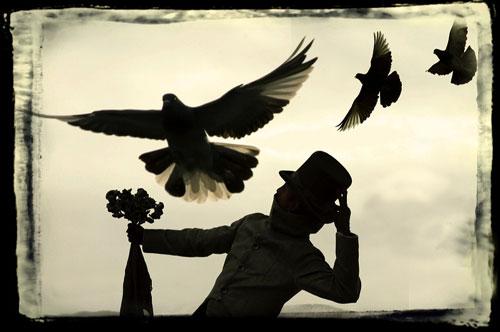 Todos somos pombas - Foto de Pedro Meyer