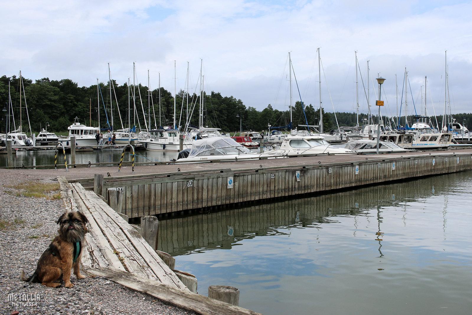 saariston rengastie, nauvo, nauvon satama, koiran kanssa matkustaminen
