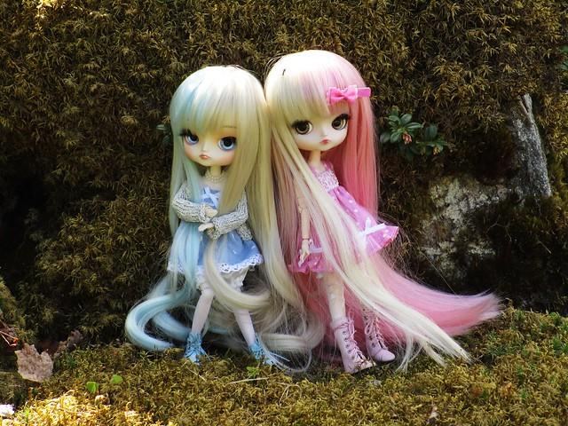 lil twins
