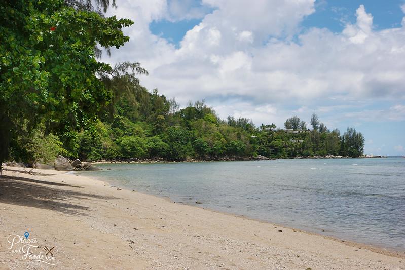 rayee beach greenery
