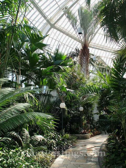 4 conservatory