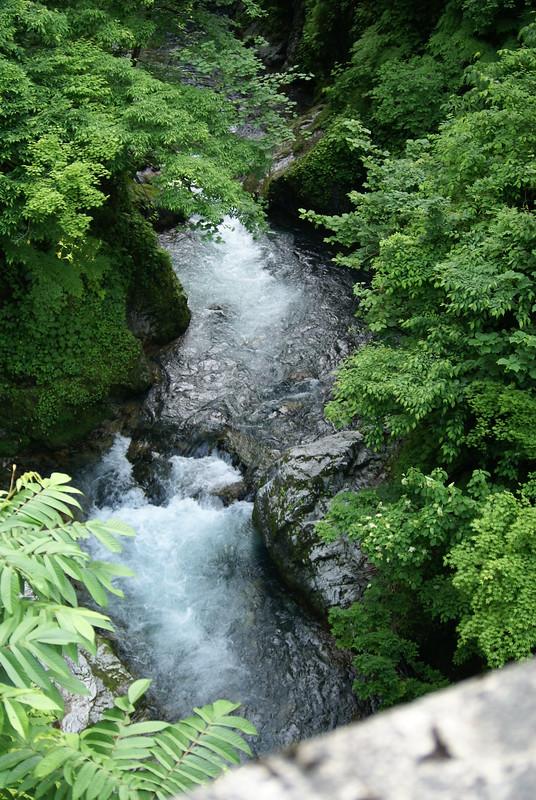 駒の湯温泉付近を流れる渓流_2011-06