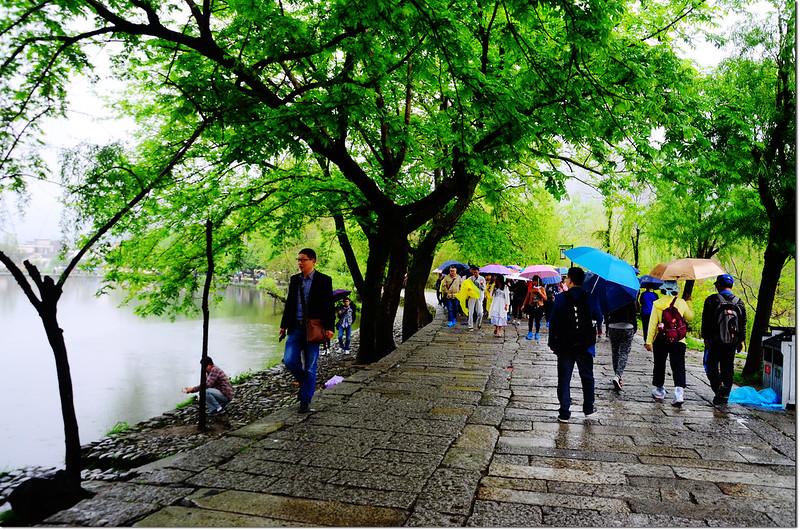 宏村南湖湖岸