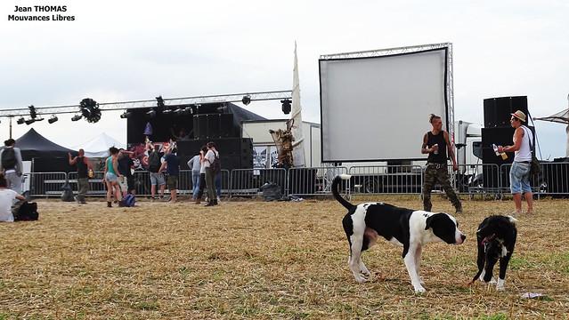 Echo System 15 ans de free party scène chiens