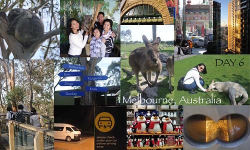 Australia Day 6