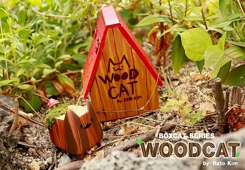 Rato Kim WoodCat House 2