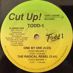 TODD-1:1 RADICAL REBEL(ALBUM SAMPLER)(LABEL SIDE-B)