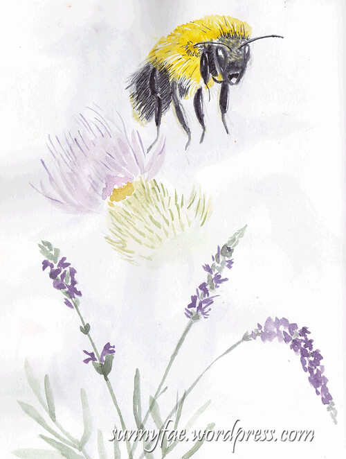 bee-+-lavender-sketch