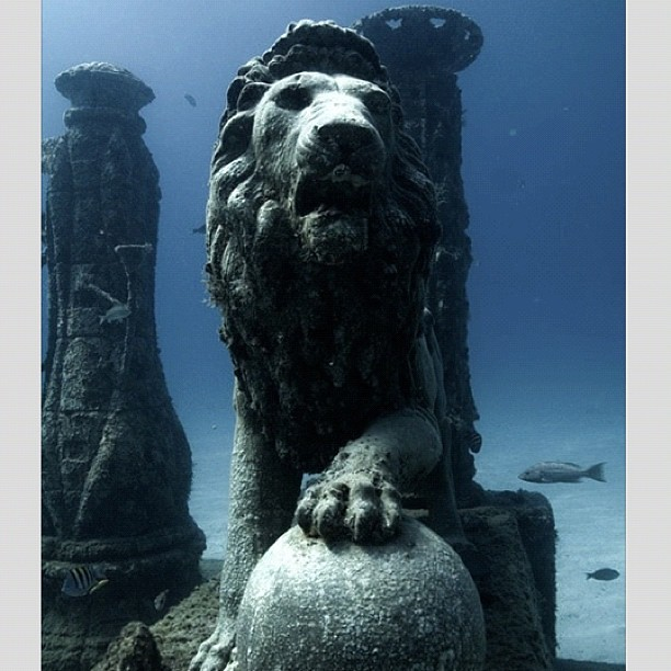 Cleopatra's underwater palace - Alexandria / Egypt. #egypt #ancient #tweegram #instagood #photoftheday #instamood #instagramhub #picoftheday #instadaily #insta #bestoftheday #ignation #igdaily #instagramers #webstagram #igaddict  #iphonesia #iphonography