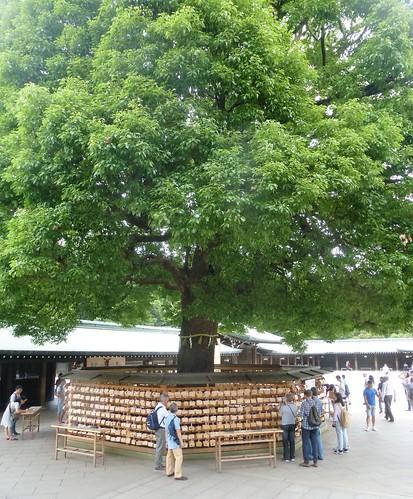 jp16-Tokyo-Temple Meiji (9)