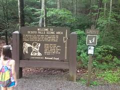 DeSoto Falls Sign