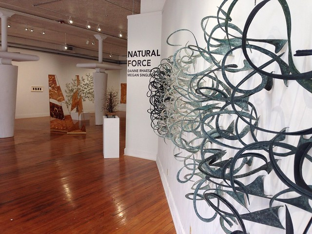 Natural Force & The Opening Reception