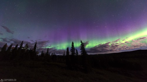 Northern lights - Denali National Park