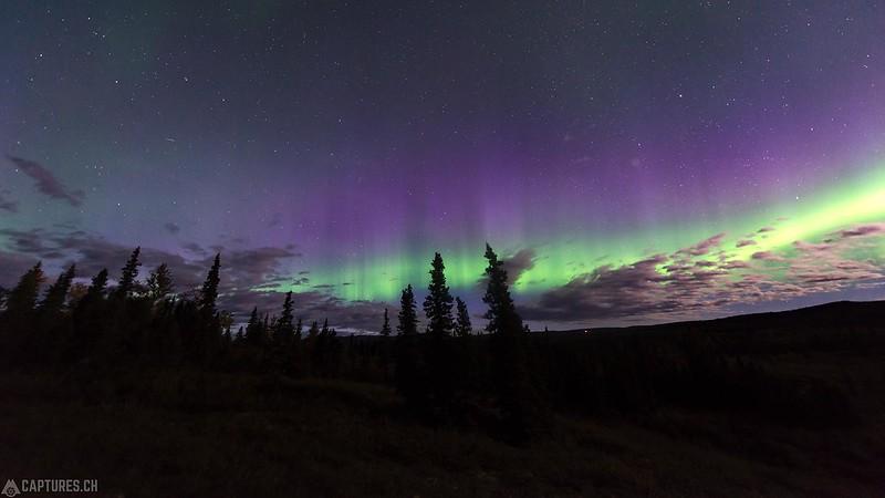 Northern lights - Denali National Park